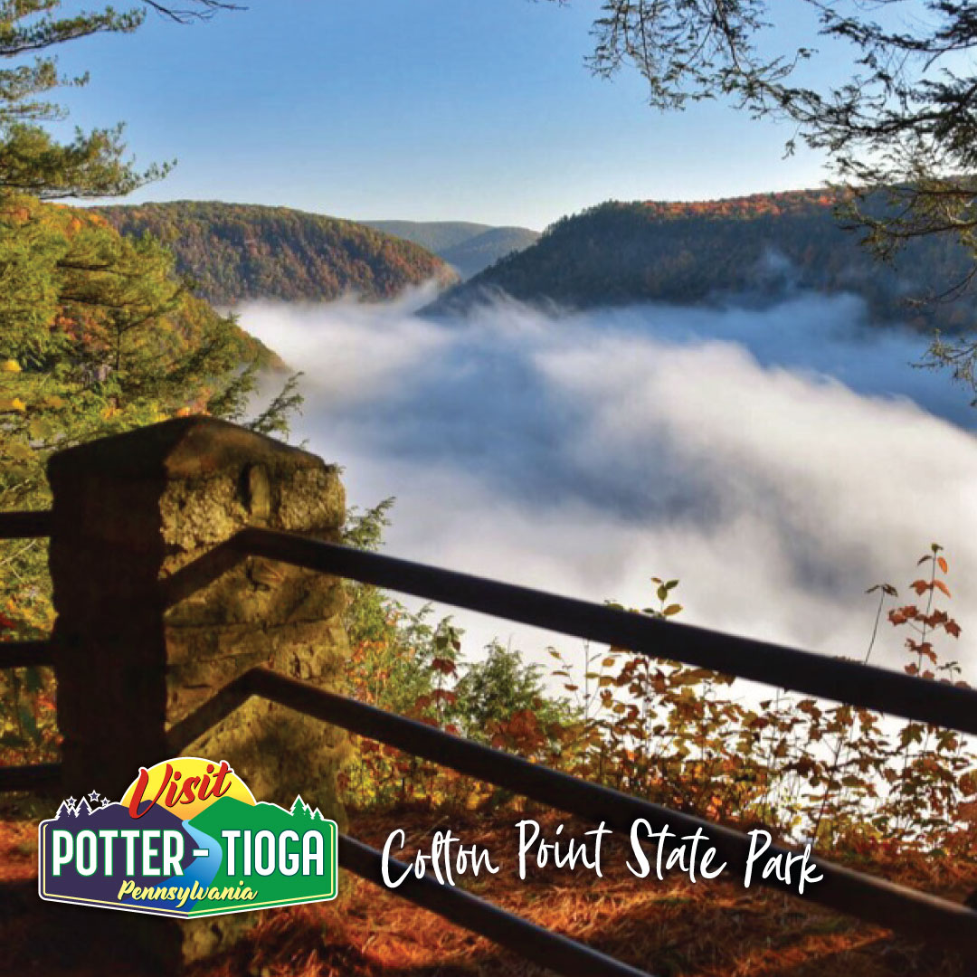 Visit Potter-Tioga - Colton Point State Park